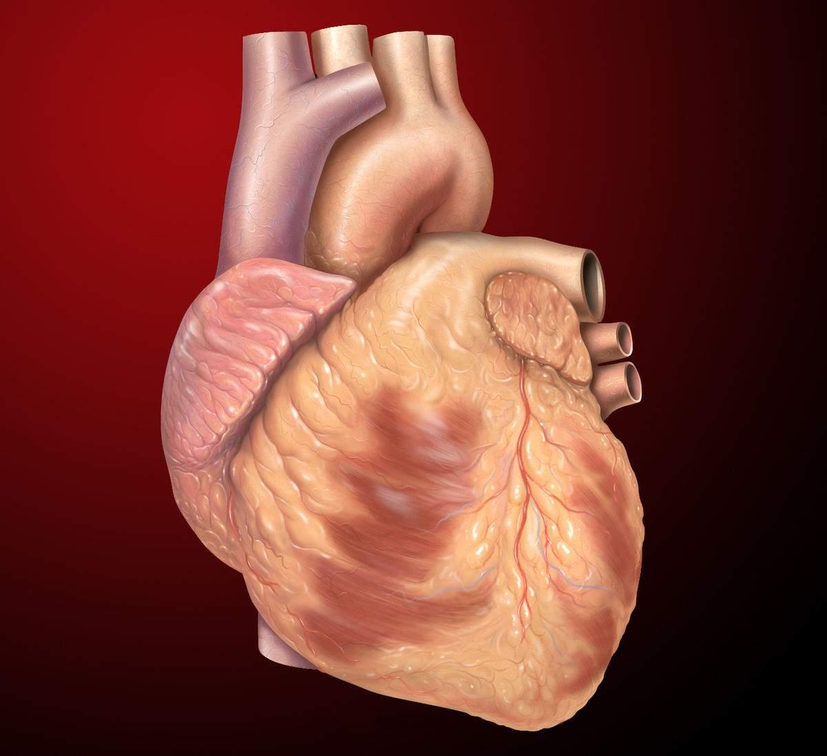 heart123