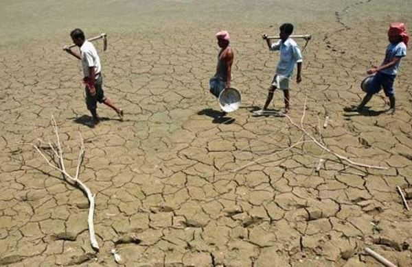 drought23435