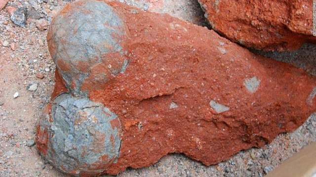 Photos_Fossilized_dinosaur_eggs_found_in_China