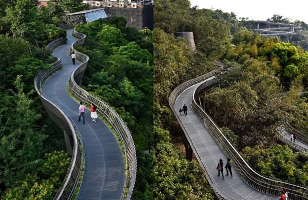 elevated_highway