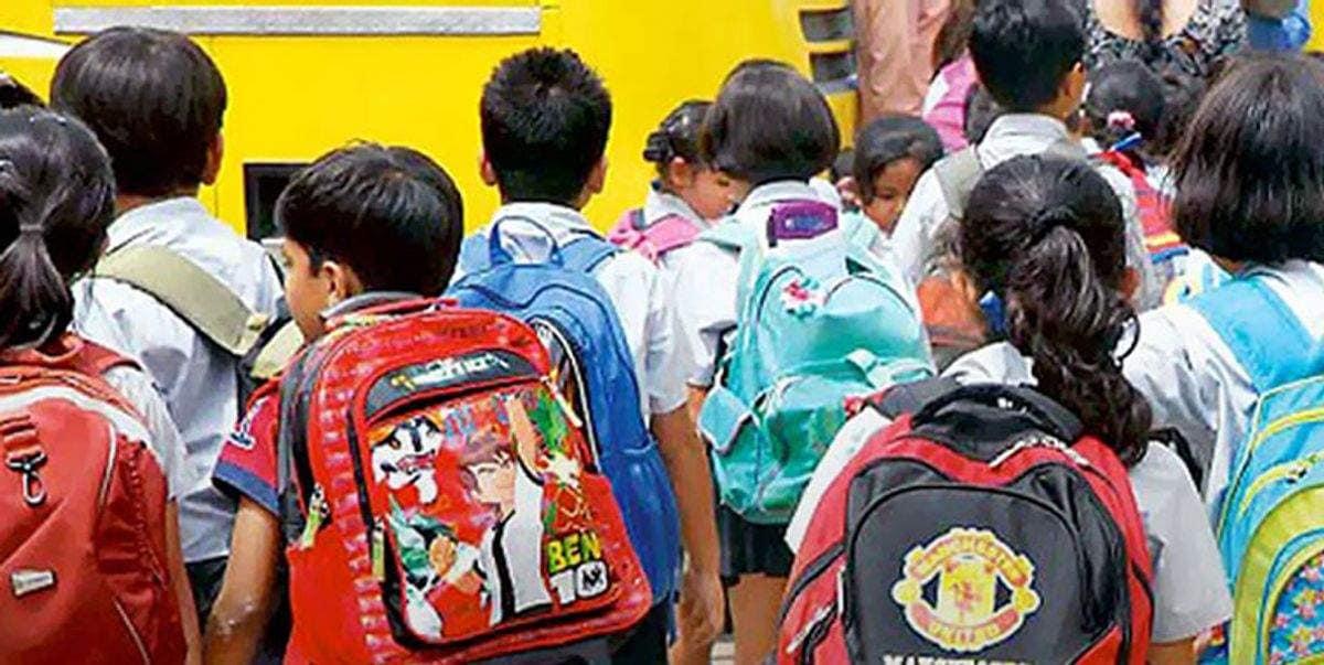 schoolcvbcvb