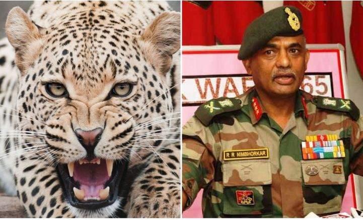 leopard_surgikal_strike