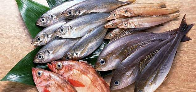 fresh-fish-malaysia
