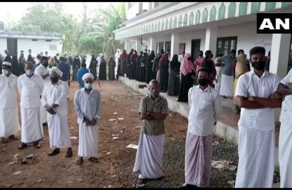 local body election voting