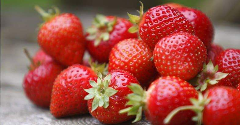 Strawberries as hot as bread
