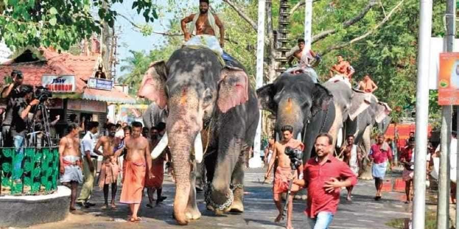 Guruvayur_temple_fest