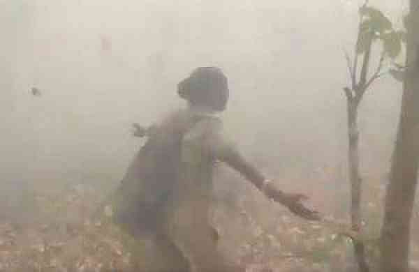 woman forest officer dances in joy as rain showers over similipal