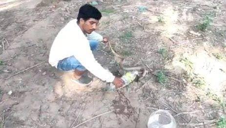 man helps snake drink water from bottle